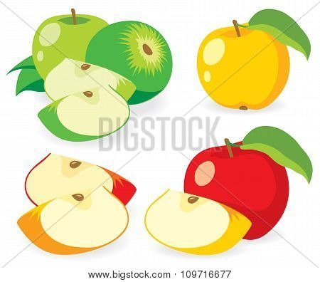 Multicolored Apples, Vector Illustrations