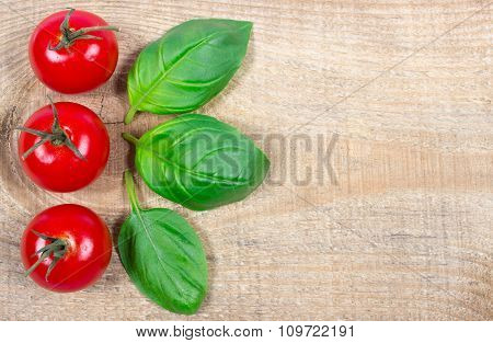 Fresh Basil And Tomato On Wooden Background.