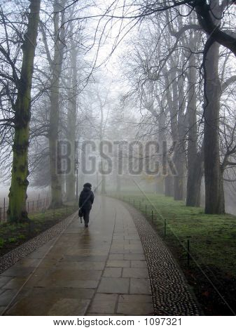 Lonely Pedestrian On A Very Misty Day, Cambridge