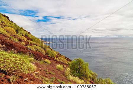Hill with grass and bushes overlooking the sea at Tenerife, Canary Islands, Spain