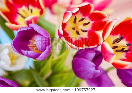 Close up view of flowers on wooden desk