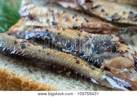 Smoked Sprats With Spices Tapas