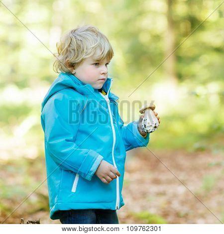 Cute toddler  boy in blue waterproof raincoat in autumn forest
