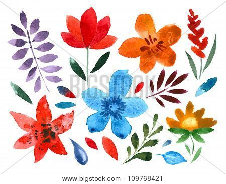 set of handpainted watercolor vector flowers and leaves. floral decorative elements