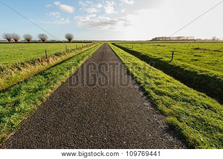 Infinitely Long Asphalt Road In A Rural Area