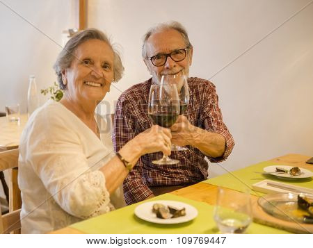 Old couple toasting and looking happy at a restaurant