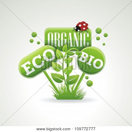 Bright Green Label With Leaves For Organic, Natural, Eco Or Bio Products