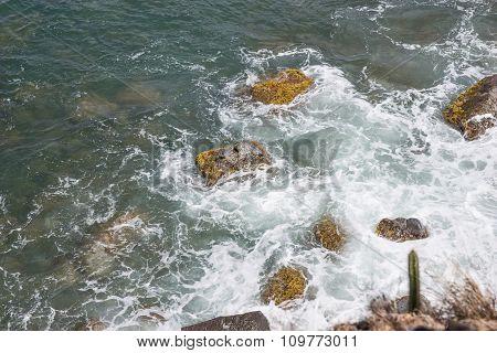 Wet stones with moss