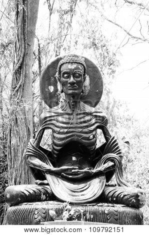 Asceticism Buddha