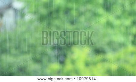 It's Raining Behind The Window