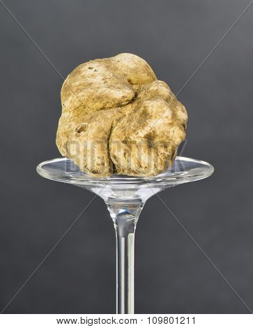 Still Life Of A Truffle On A Black Background