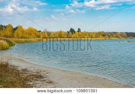 Autumnal landscape with Swan lakes in Sumskaya oblast Ukraine