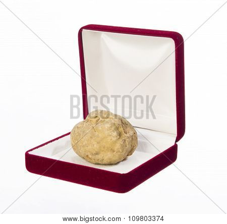 Still Life Of A Truffle In A Box For Jewelry