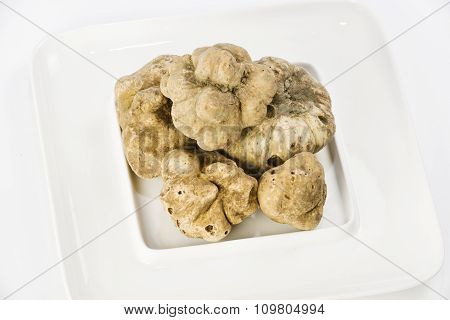 Many White Truffles From Piedmont On Ceramic Plate