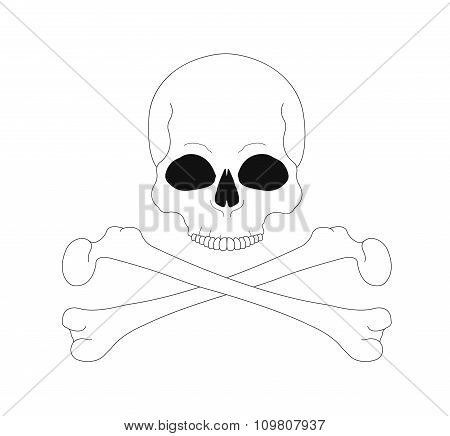 Jolly Roger. Skull with crossbones