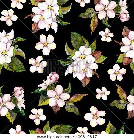 Seamless floral contrast background with apple tree flowers on black backdrop. Watercolor drawing