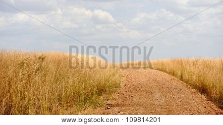 Road To The National Reserve Of Kenya