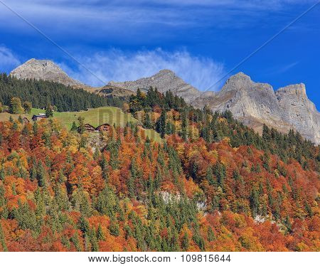 View In Engelberg In Autumn