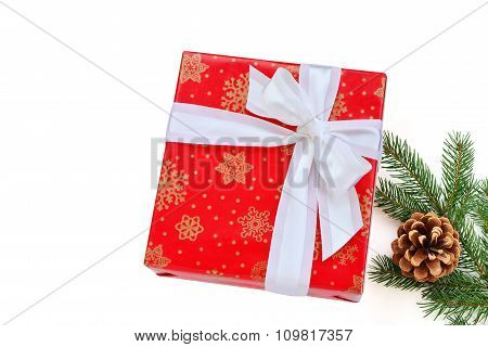 Red Gift With White Bow, Fir Branch Isolated