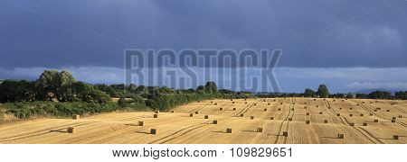 Beautiful field with straw bales and storm clouds