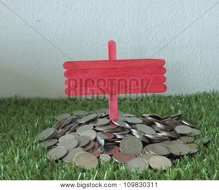 Financial Concept. Coin Laying On The Grass
