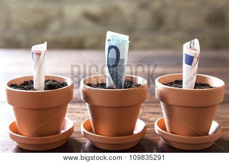 Euro Banknotes In Flowerpots, Concept Financial Investment
