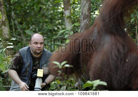The Photographer Was Frightened Of An Orangutan