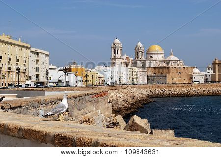 Cadiz Cathedral and waterfront.