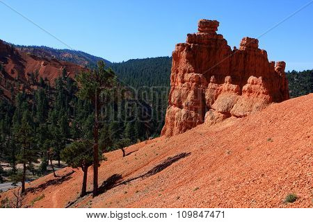 Red Canyon at Scenic Byway 12, Dixie national forest, Utah, USA