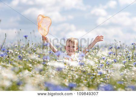 A Little Boy Walks On Chamomile Field