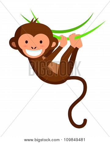 Cute Smiling Monkey On Lianas, Vector Illustration