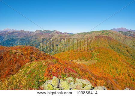 Mountain Autumn Landscape.
