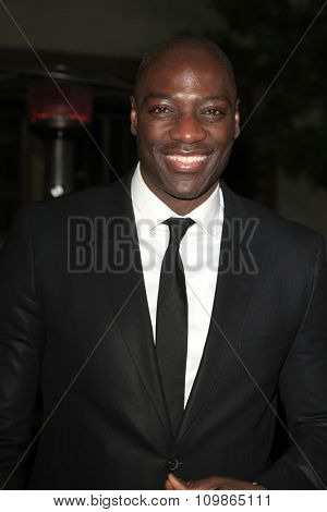 LOS ANGELES - FEB 15:  Adewale Akinnuoye-Agbaje at the Make-Up Artists And Hair Stylists Guild Awards 2014 at the Paramount Theater on February 15, 2014 in Los Angeles, CA