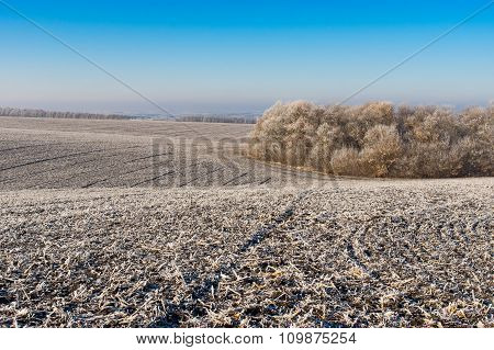 Landscape with agricultural fields in Ukraine