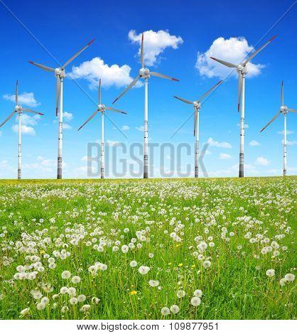 Wind turbines on meadow. Clean energy.