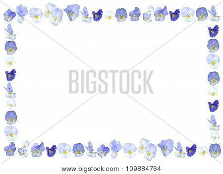 Blue Violet Pansies flower frame