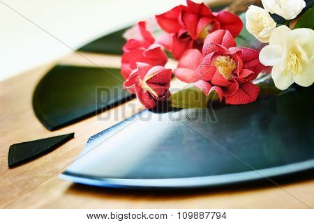 Red And White Flowers On A Broken Record