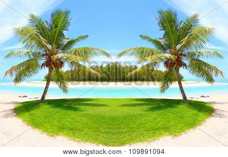 Tropical beach and palm trees with coconuts, blue sea and sunny sky on a background. Greeting from paradise.