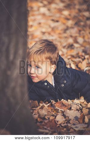 I am hiding behind a tree, little boy lies in autumn leaves hiding behind tree