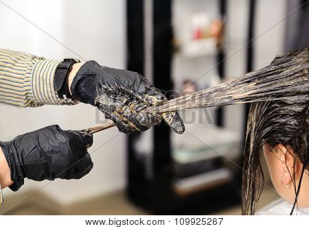 Hairdresser Dye  Hair Of Female Client