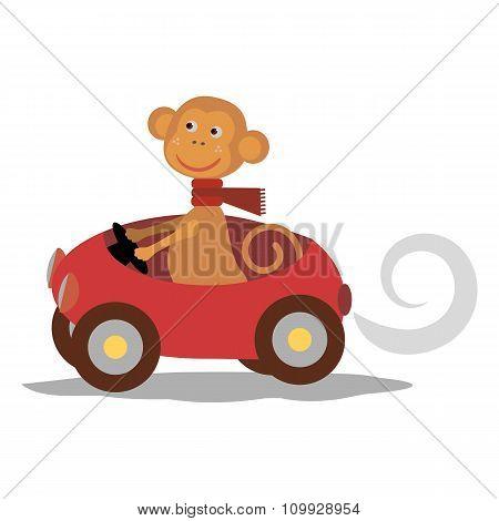 cute monkey with scarf on car
