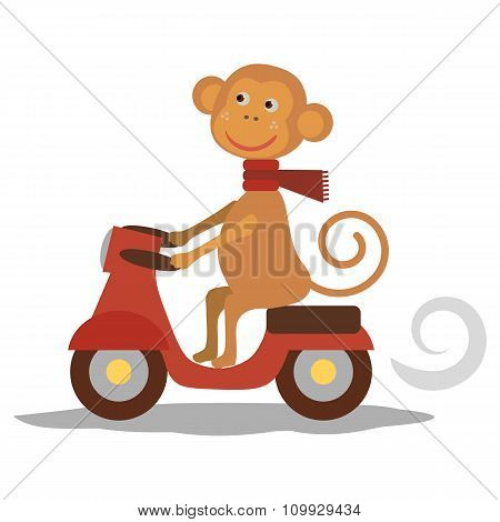 cute monkey with scarf on transport. Vecor