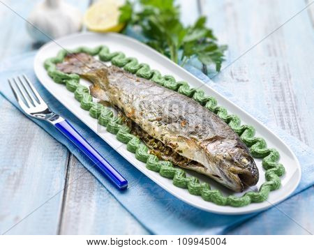 trout with spinach cream decoration,  selective focus