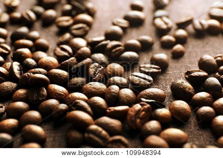 Roasted coffee grains, close-up