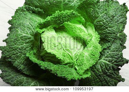 Savoy cabbage background, close up