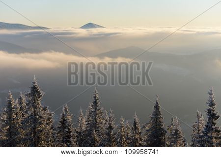 Morning fog in mountains. Winter landscape at dawn. Carpathians, Ukraine, Europe