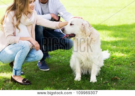 family, pet, animal and people concept - close up of happy couple with labrador retriever dog walking in city park