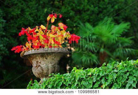 Concrete flower pot in garden