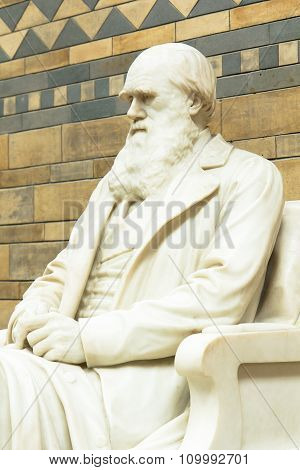 Statue Of Charles Darwin In The Main Hall At The Natural History Museum.