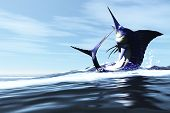 pic of sailfish  - A Blue Marlin jumps through the ocean surface in a spray of water - JPG